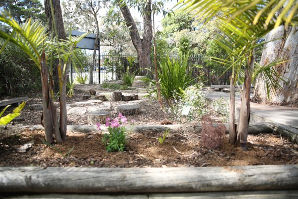 image of KU Heathcote Preschool